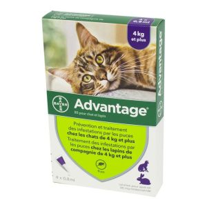 ADVANTAGE 80 - Bte/4 Pipettes de 0.8ml - Chat et Lapin de plus de 4kg - Infestions par les Puces