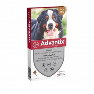 ADVANTIX TRES GRAND CHIEN 40 à 60 kg - Spot-on pipette - Bte/4 Pipettes de 6ml - BAYER SANTE ANIMALE