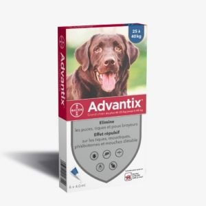 ADVANTIX GRAND CHIEN 25 à 40 kg - Spot-on pipette - Bte/6 Pipettes de 4ml - BAYER SANTE ANIMALE