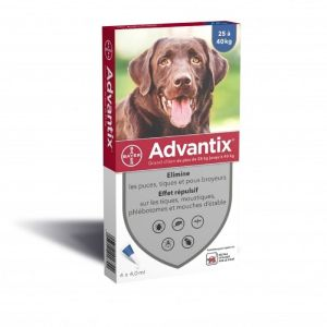 ADVANTIX GRAND CHIEN 25 à 40 kg - Spot-on pipette - Bte/4 Pipettes de 4ml - BAYER SANTE ANIMALE